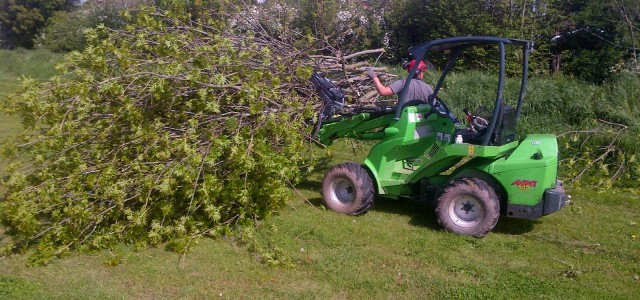 JAG Tree Surgery – Tree Care Service